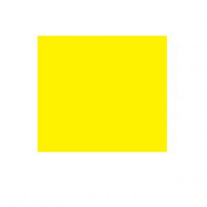 yellowdgj.PNG